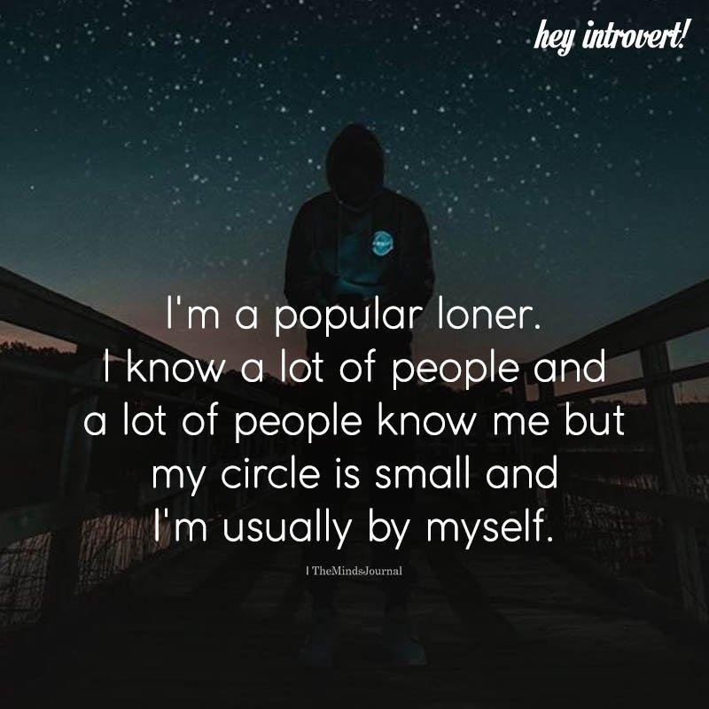 I'm A Popular Loner