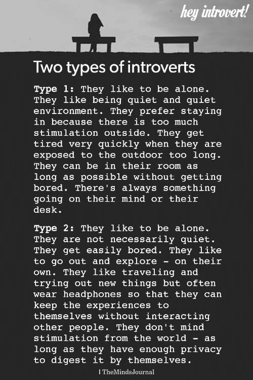 Two Types Of Introverts