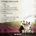 10 Things I Want In My Life