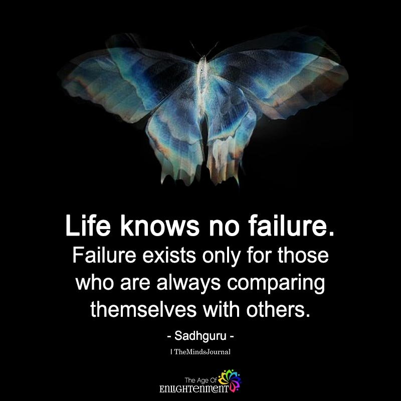 Life Knows No Failure