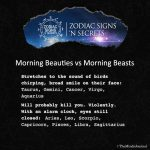 Signs As Morning Beauties Vs Morning Beasts