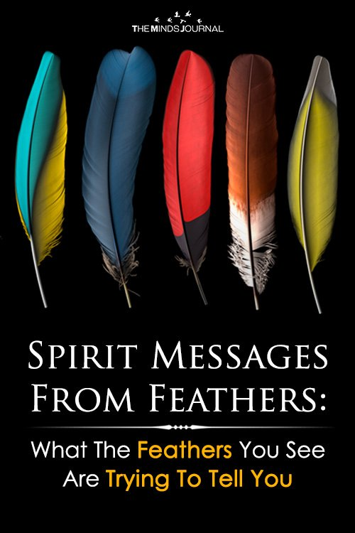 Spirit Messages From Feathers What The Feathers You See Are Trying To Tell You