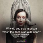 Why Do You Stay In Prison