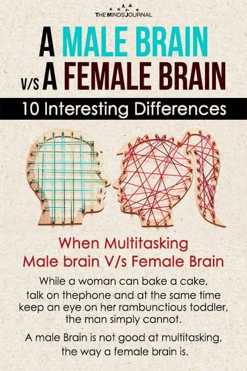 A Male Brain Vs A Female Brain - 10 Interesting Differences