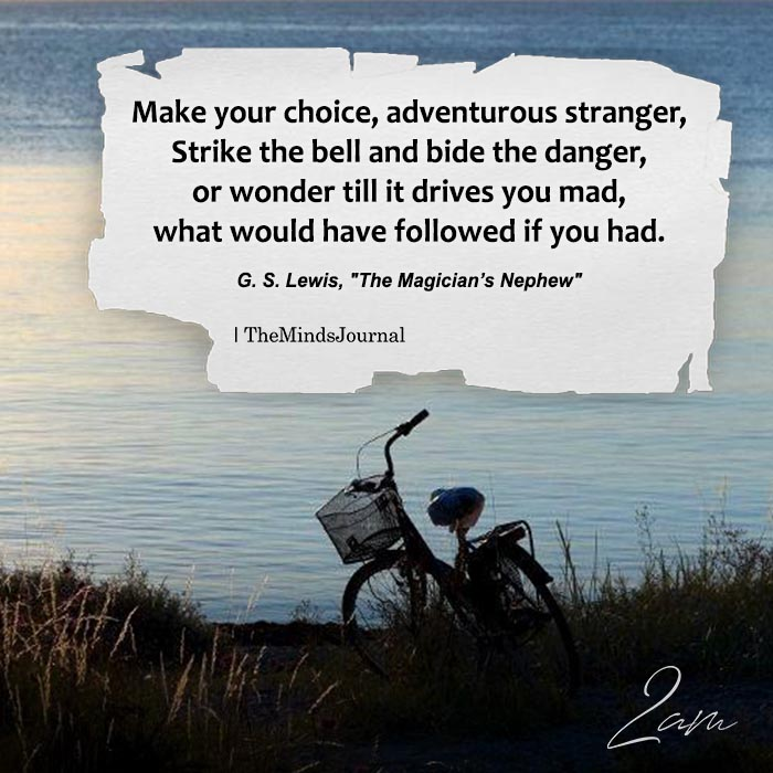 Make Your Choice, Adventurous Stranger
