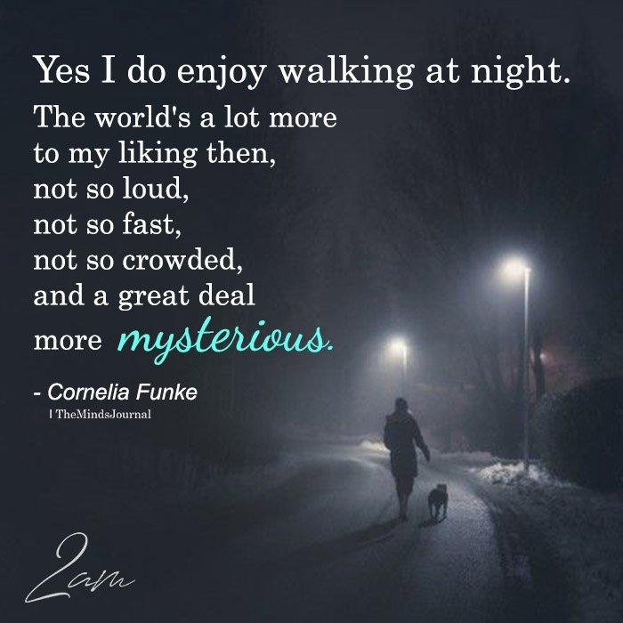 Yes I Do Enjoy Walking At Night