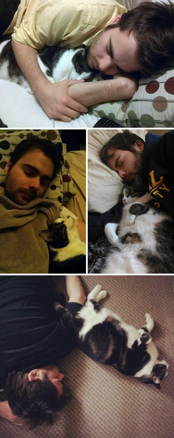 naping with cat
