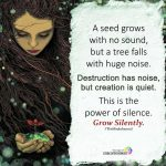 A Seed Grows With No Sound