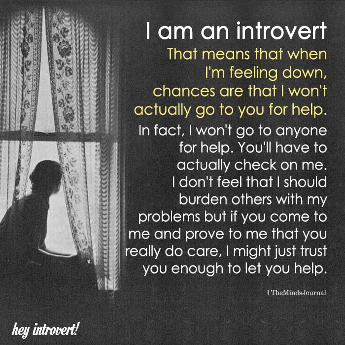 I am an introvert