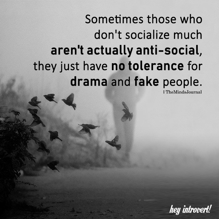 Sometimes Those Who Don't Socialize Much Aren't Actually Anti-social