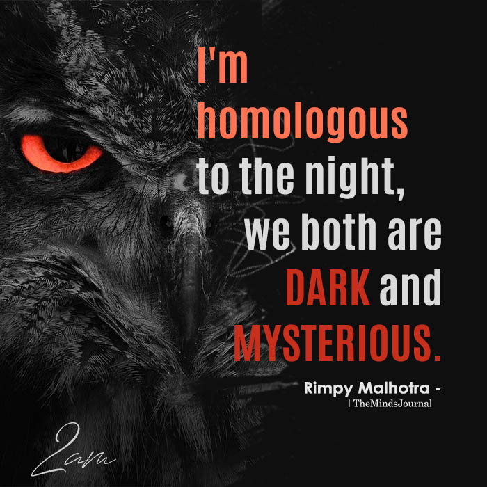 I'm Homologous To The Night