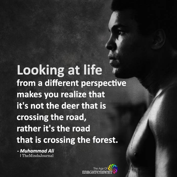 Looking At Life From A Different Perspective
