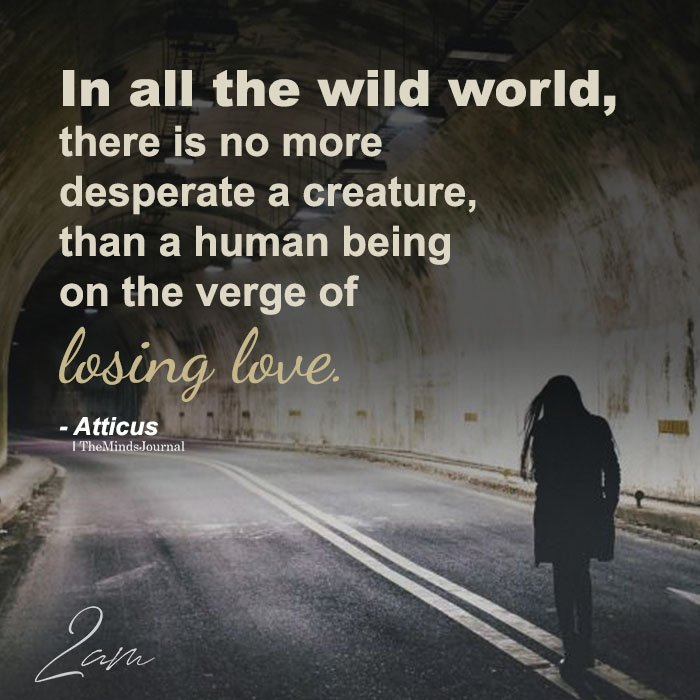 In All The Wild World, There Is No More Desperate A Creature
