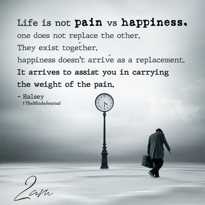 Life is not pain vs happiness