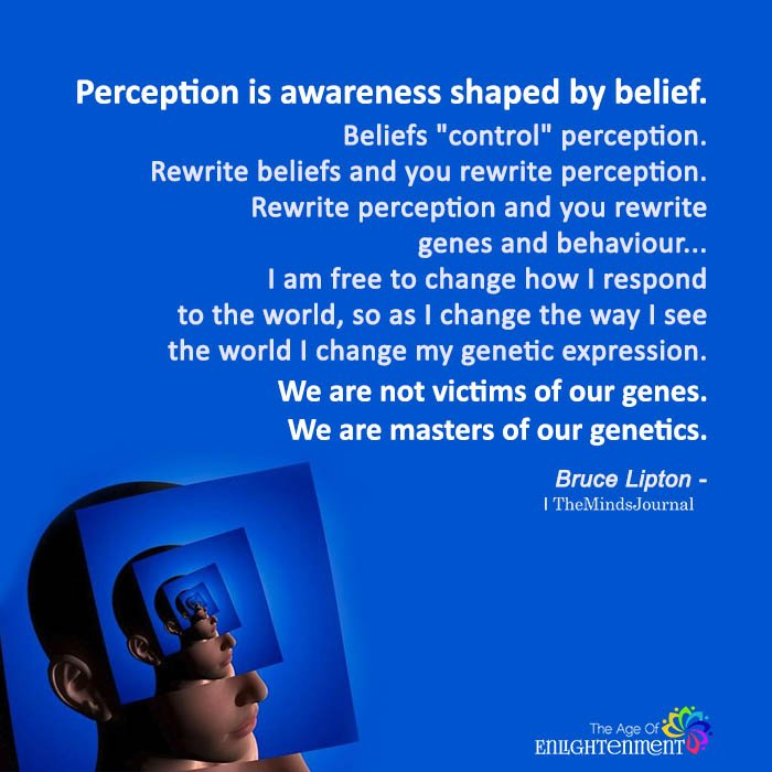 Perception Is Awareness Shaped By Belief