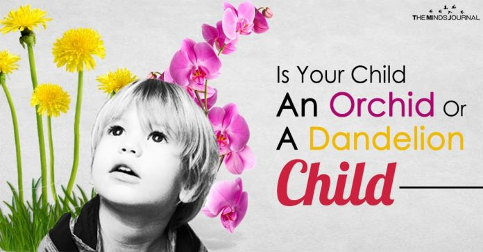 Is Your Child An Orchid Or A Dandelion Child