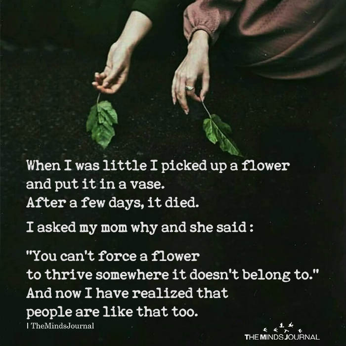 When I was little I picked up a flower