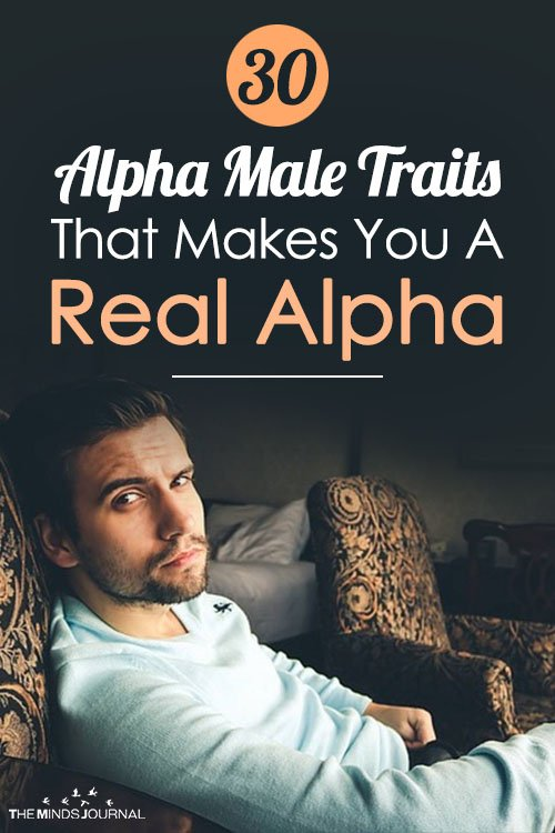 traits of an alpha male