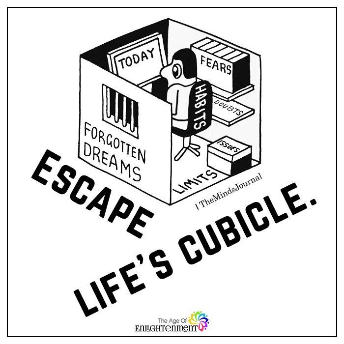 Escape life's cubicle