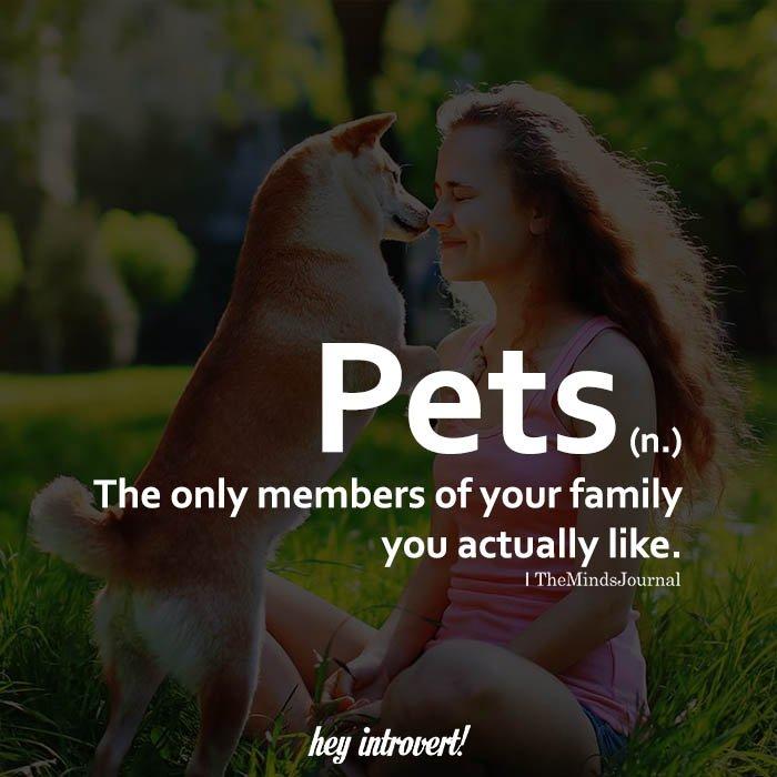 Pets (n.)