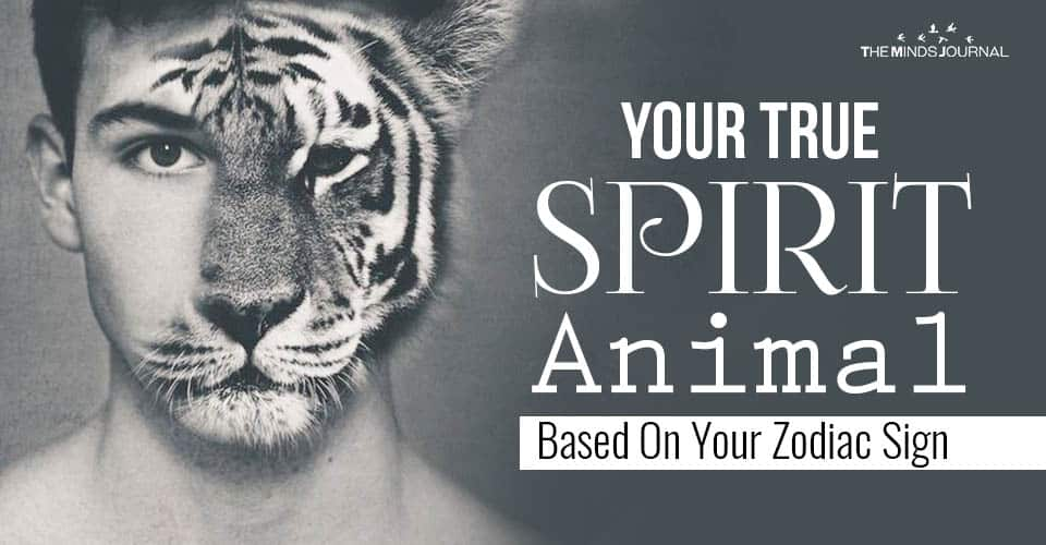 Your True SPIRIT Animal Based On Your Zodiac Sign