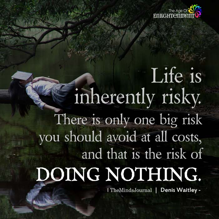 Life is inherently risky