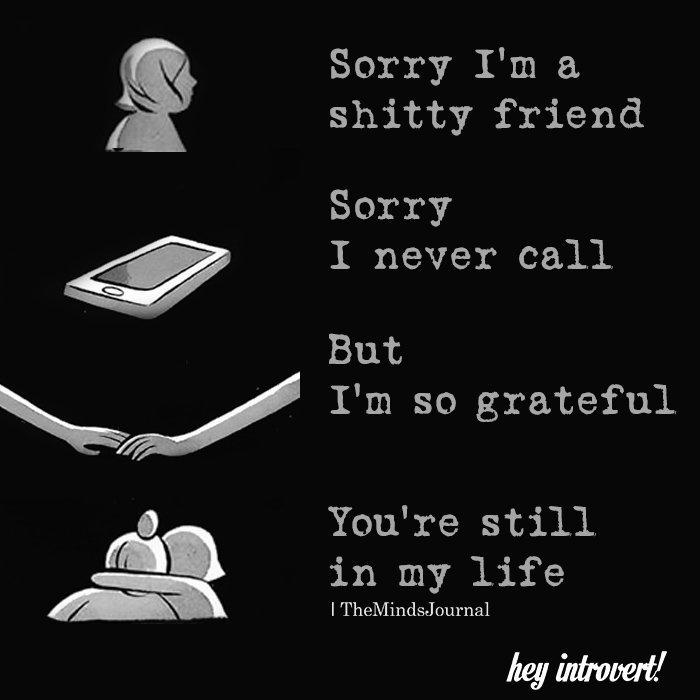 Sorry I'm a Shitty friend