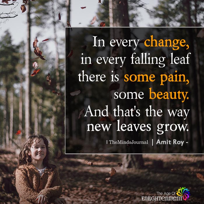 In every change, in every falling leaf there is some pain