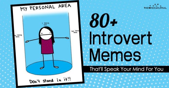 80+ introvert memes