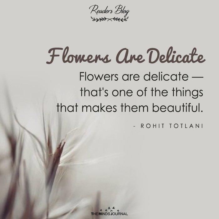 Flowers Are Delicate