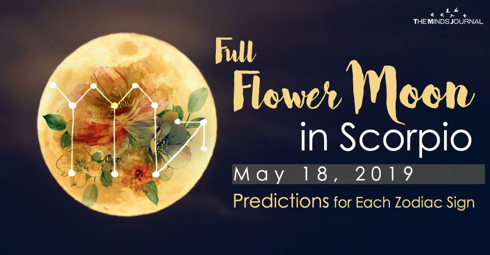 Full Flower Moon in Scorpio – This Is What It means For You!