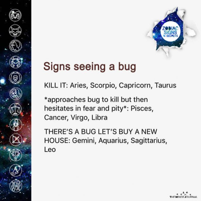 Signs Seeing A Bug