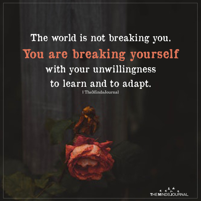 The World Is Not Breaking You