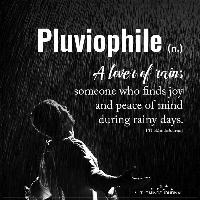 Pliviophile A lover of rain