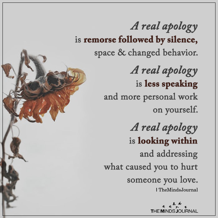 a real apology is remorse followed by silence