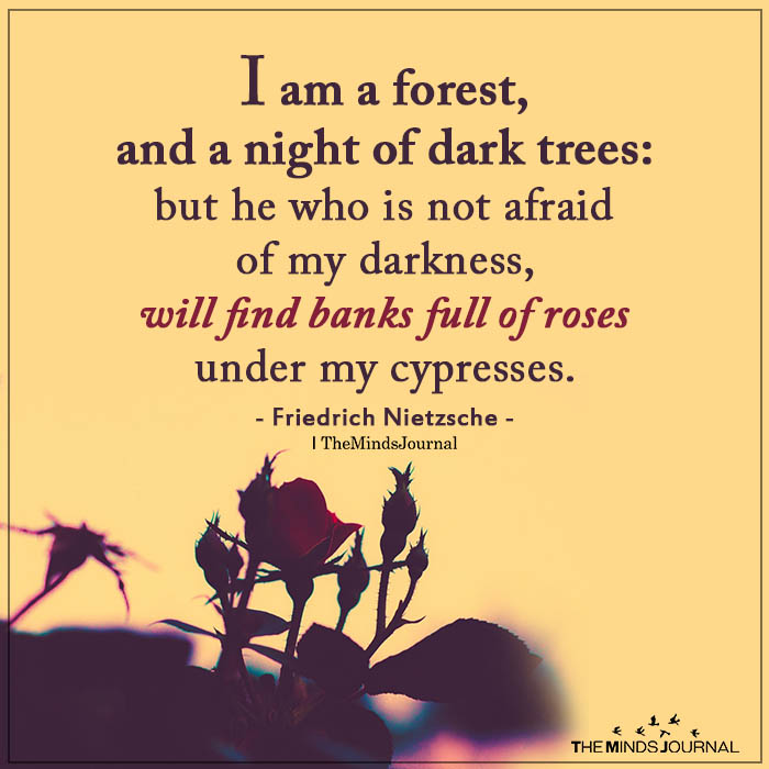 I Am A Forest, And A Night Of Dark Trees