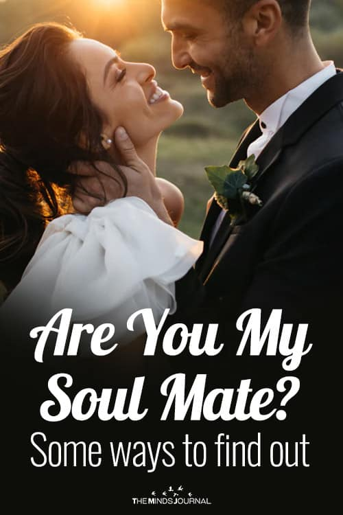 Are You My Soul Mate pin