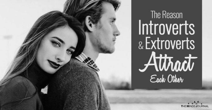 The Reason Introverts and Extroverts Attract Each Other
