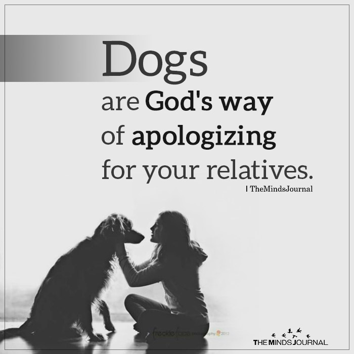 dog quotes relatives