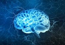 improve brain health