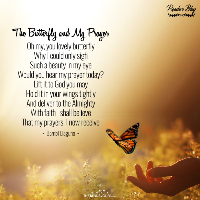The Butterfly and My Prayer