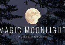 readers blog magic moonlight