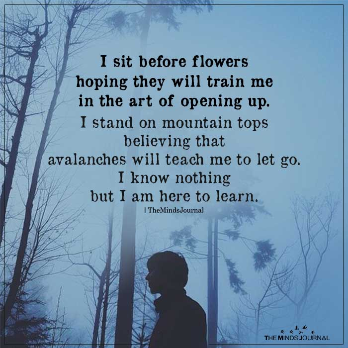 I Sit Before Flowers