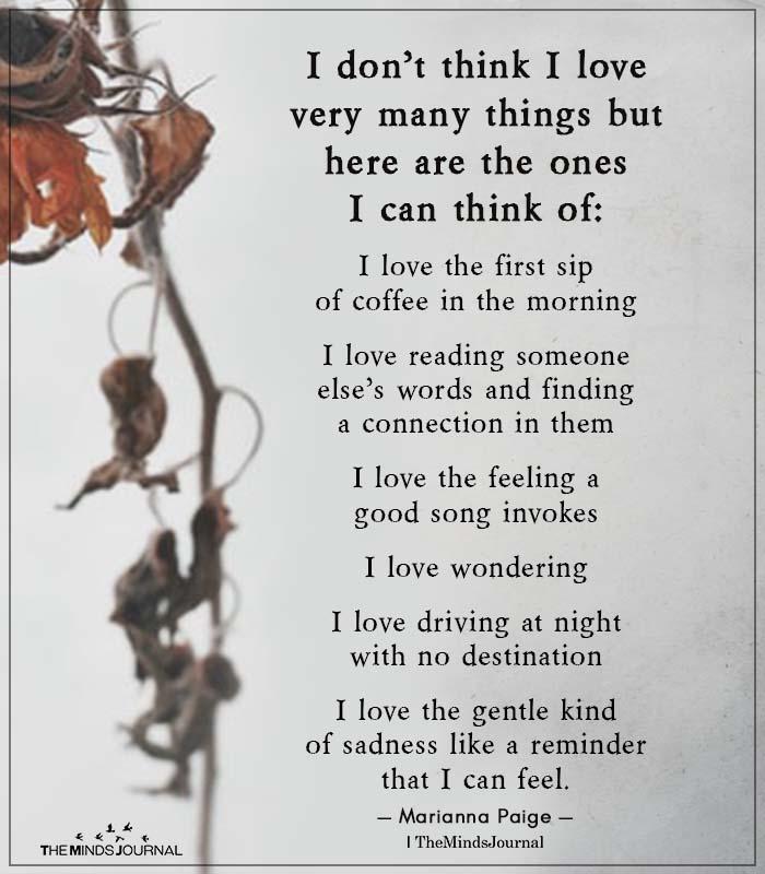 I don't Think I Love Very Many Things