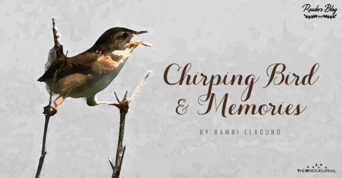 Chirping Bird and Memories
