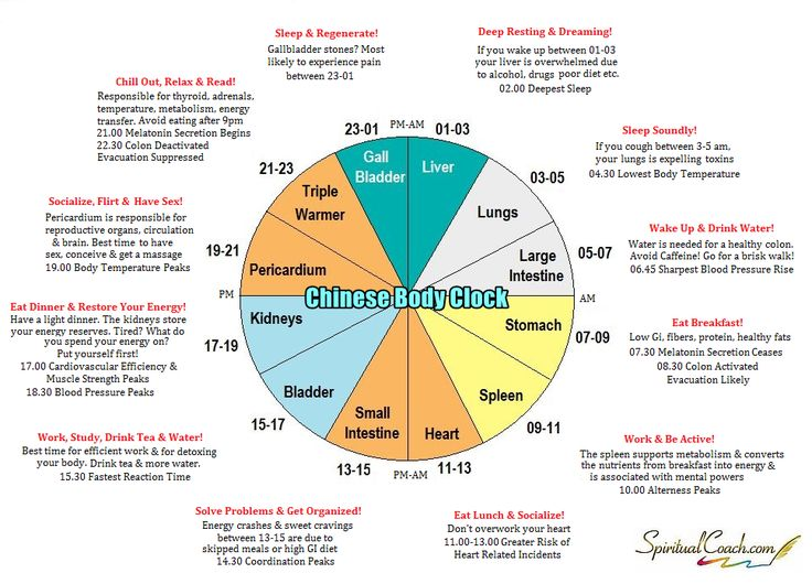 The Chinese Body Clock: How It Can Benefit Your Mind and Health