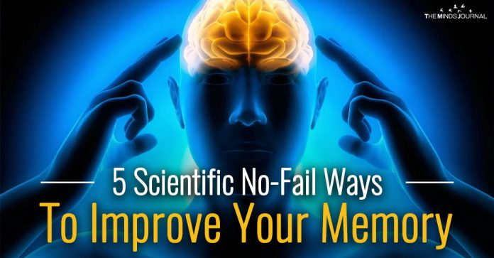 5 Scientific No-Fail Ways To Improve Your Memory