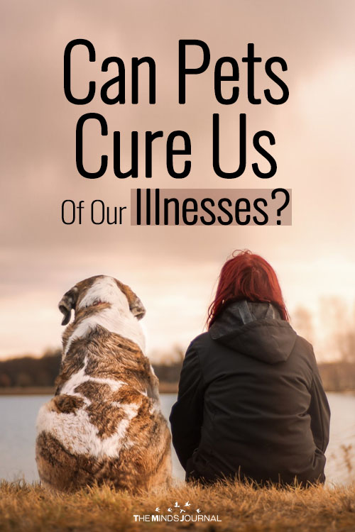 Can Pets Cure Us Of Our Illnesses?