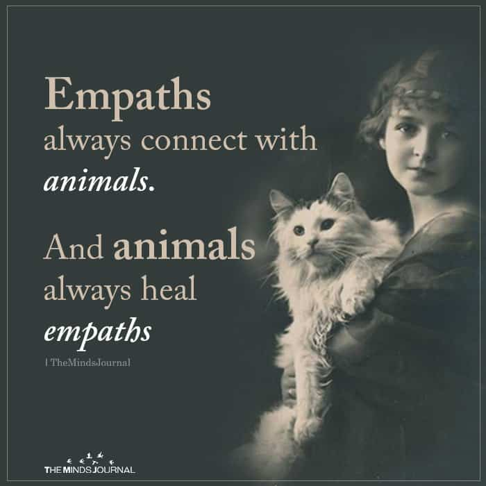 Empaths Always Connect with Animals