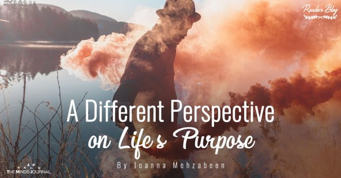 Different Perspective on Life Purpose